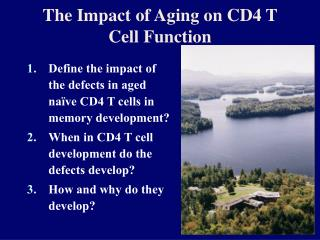The Impact of Aging on CD4 T Cell Function
