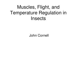 Muscles, Flight, and Temperature Regulation in Insects