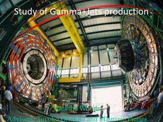 Study of Gamma+Jets production