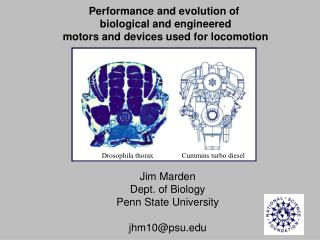 Performance and evolution of  biological and engineered motors and devices used for locomotion