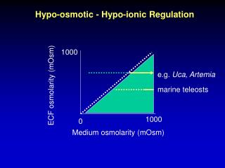 Hypo-osmotic - Hypo-ionic Regulation
