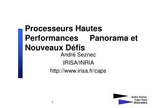 Processeurs Hautes Performances     Panorama et Nouveaux Défis