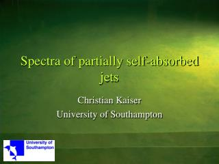 Spectra of partially self-absorbed jets