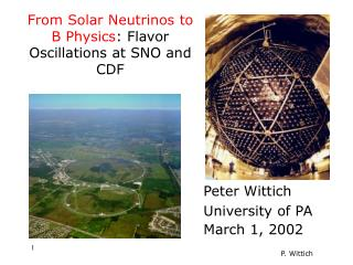 From Solar Neutrinos to B Physics : Flavor Oscillations at SNO and CDF