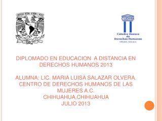 DIPLOMADO EN EDUCACION  A DISTANCIA EN DERECHOS HUMANOS 2013
