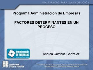 P rograma Administración de Empresas FACTORES DETERMINANTES EN UN PROCESO