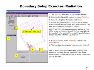Boundary Setup Exercise: Radiation