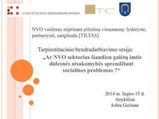 NVO vaidmuo stiprinant pilietinę visuomenę: lyderystė, partnerystė, sanglauda [TILTAS]