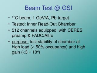 Beam Test @ GSI