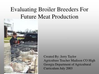 Evaluating Broiler Breeders For Future Meat Production