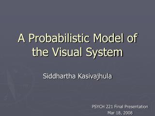 A Probabilistic Model of the Visual System