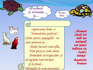 """,,Numai când vei iubi un animal vei simţi iubirea cu toată inima"""" A natole  France"""