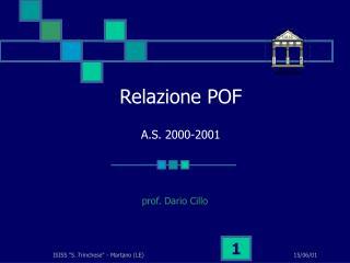 Relazione POF A.S. 2000-2001