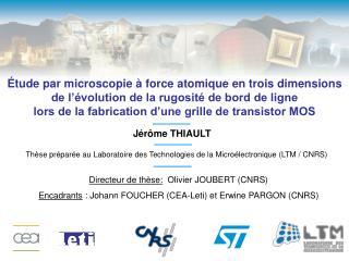 Directeur de thèse:   Olivier JOUBERT (CNRS)