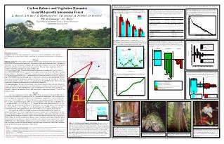 Carbon Balance and Vegetation Dynamics  in an Old-growth Amazonian Forest