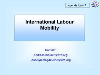 International Labour Mobility