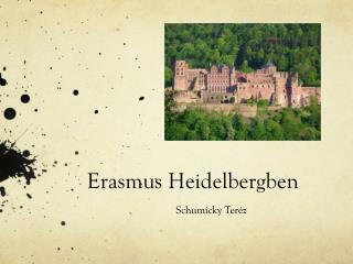 Erasmus Heidelbergben