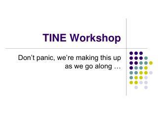 TINE Workshop