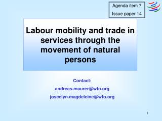 Labour mobility and trade in services through the movement of natural persons