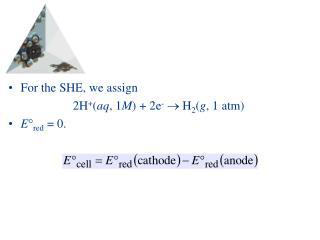 For the SHE, we assign 2H + ( aq , 1 M ) + 2e -   H 2 ( g , 1 atm) E  red  = 0.