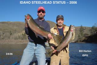 IDAHO STEELHEAD STATUS – 2006