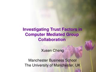Investigating Trust Factors in Computer Mediated Group Collaboration