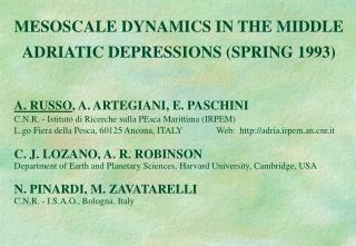 MESOSCALE DYNAMICS IN THE MIDDLE ADRIATIC DEPRESSIONS (SPRING 1993)