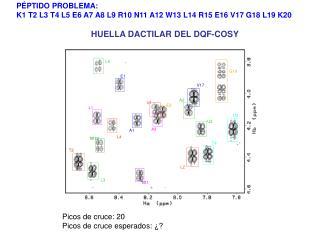 HUELLA DACTILAR DEL DQF-COSY