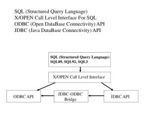 SQL (Structured Query Language) X/OPEN Call Level Interface For SQL