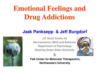 Emotional Feelings and Drug Addictions