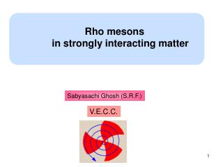 Rho mesons         in strongly interacting matter