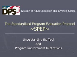 The Standardized Program Evaluation Protocol ~SPEP~