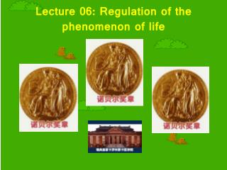 Lecture 06: Regulation of the phenomenon of life