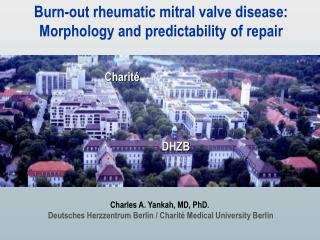 Burn-out rheumatic mitral valve disease: Morphology and predictability of repair