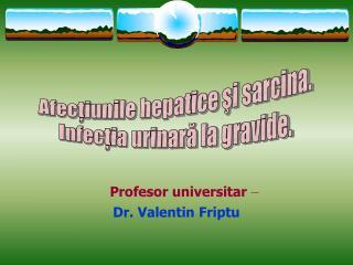 Profesor universitar  –  Dr. Valentin Friptu
