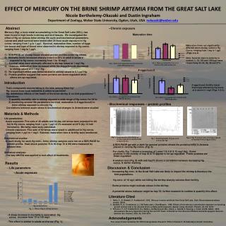EFFECT OF MERCURY ON THE BRINE SHRIMP ARTEMIA FROM THE GREAT SALT LAKE Nicole Berthelemy-Okazaki and Dustin Ingraham Dep