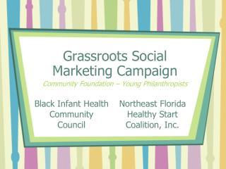 Black Infant Health  Community Council