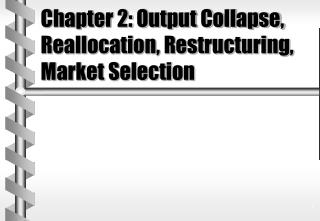 Chapter 2: Output Collapse, Reallocation, Restructuring, Market Selection