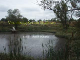 Visualizing Kermit Shallows