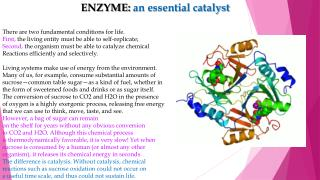 ENZYME:  an essential catalyst  There are two fundamental conditions for life.