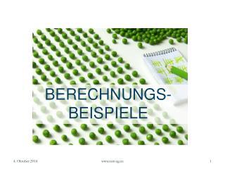 BERECHNUNGS- BEISPIELE