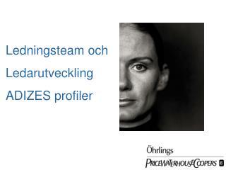 Ledningsteam och Ledarutveckling ADIZES profiler
