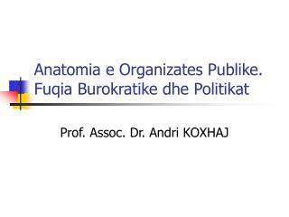 Anatomia e Organizates Publike. Fuqia Burokratike dhe Politikat