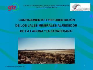 """CONFINAMIENTO Y REFORESTACIÓN DE LOS JALES MINERALES ALREDEDOR  DE LA LAGUNA """"LA ZACATECANA"""""""
