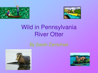 Wild in Pennsylvania River Otter