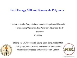 Free Energy MD and Nanoscale Polymers