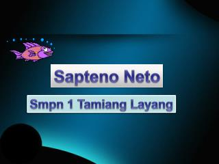 Sapteno Neto