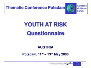YOUTH AT RISK Questionnaire