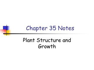 Chapter 35 Notes