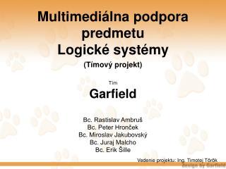 Multimediálna podpora predmetu  Logické systémy (Tímový projekt)